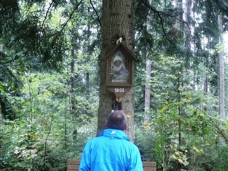Dieser Bildbaum wird von Wanderkollegen Zinner genau unter die Lupe genommen